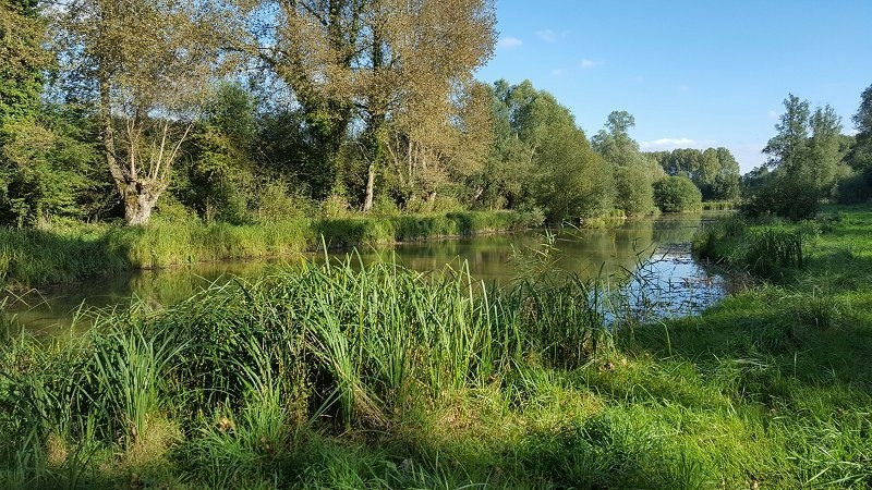 Vente terrain Sect. st valery / somme 55 000€ - Photo 3