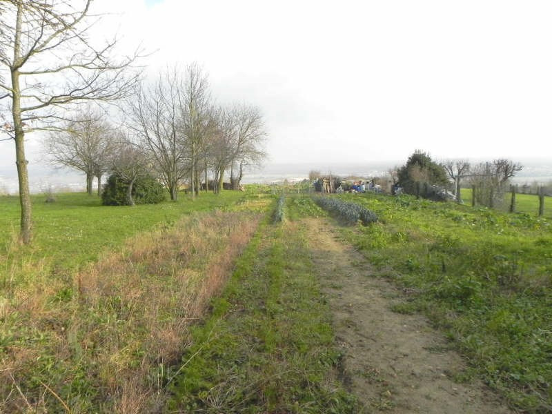 Vente terrain Andresy 185000€ - Photo 1