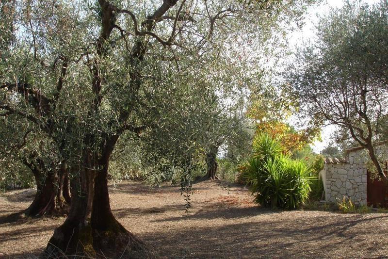Vendita terreno L'abadie 318000€ - Fotografia 6
