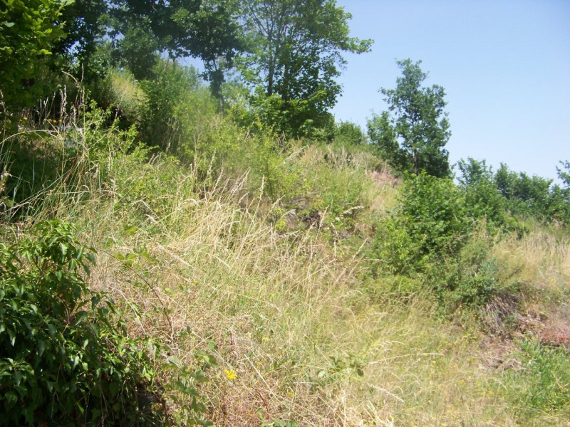 Vente terrain Ceyssac 53000€ - Photo 5