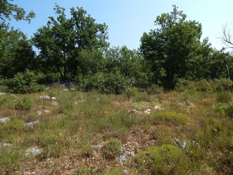 Vente terrain Régusse 92000€ - Photo 1