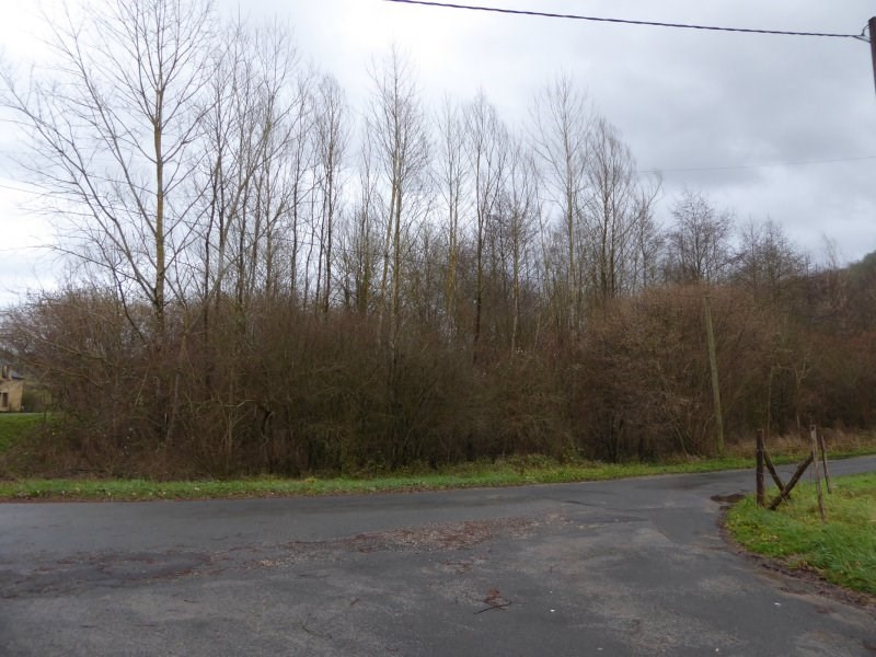 Vente terrain Peyrignac 1 300€ - Photo 3