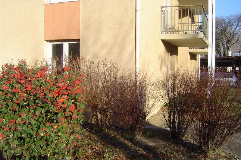 Rental apartment Toulouse 533€ CC - Picture 2
