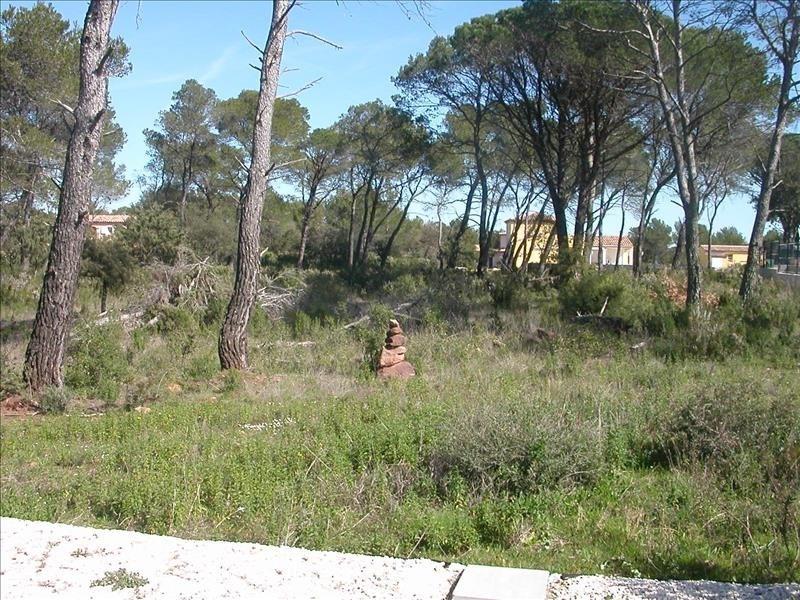 Vente terrain Le cannet des maures 148000€ - Photo 2