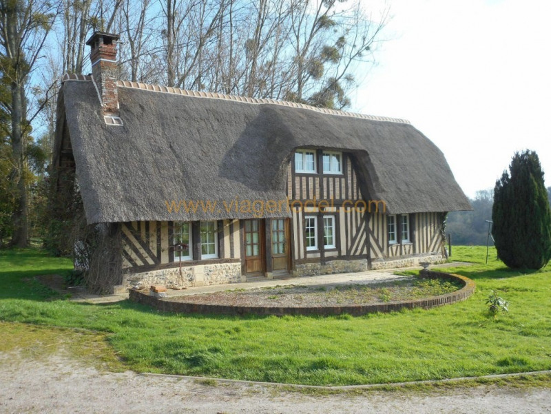 Vendita nell' vitalizio di vita casa Martainville 190800€ - Fotografia 24