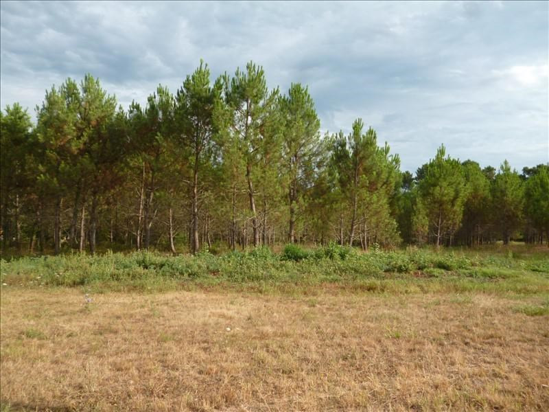 Vente terrain Perigueux 41 000€ - Photo 1