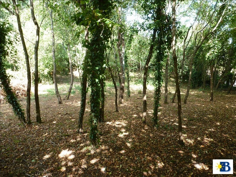 Vente terrain Vouneuil sur vienne 26000€ - Photo 3