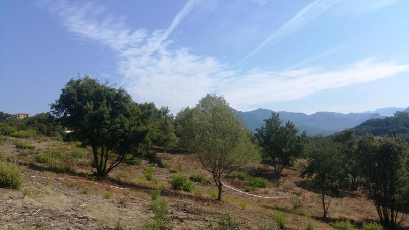 Vente terrain Eccica-suarella 135000€ - Photo 2