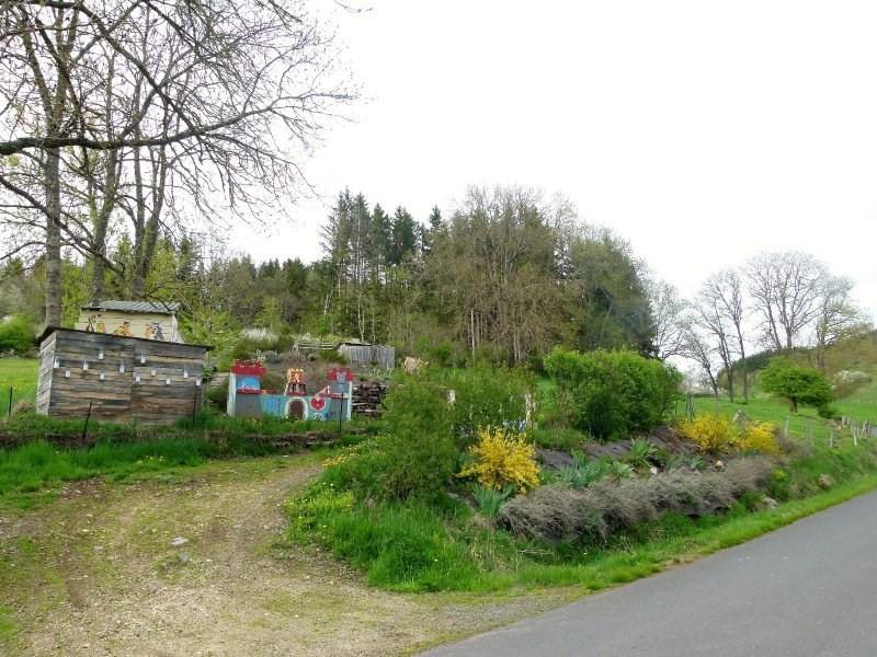 Vente maison / villa Allegre 65000€ - Photo 17