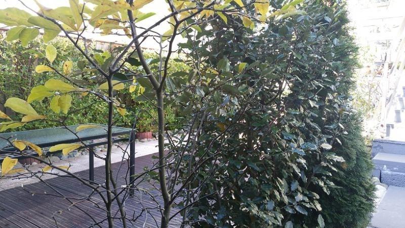 Vente maison / villa Mulhouse 210000€ - Photo 9