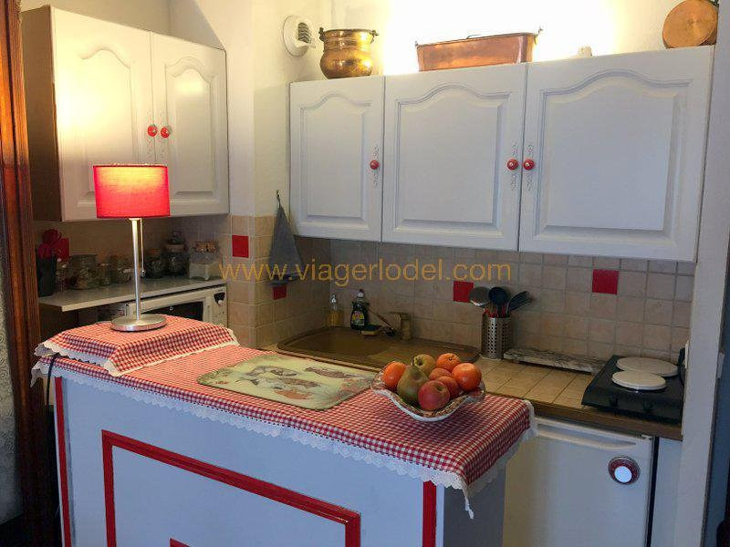 Viager appartement Nice 38 500€ - Photo 6