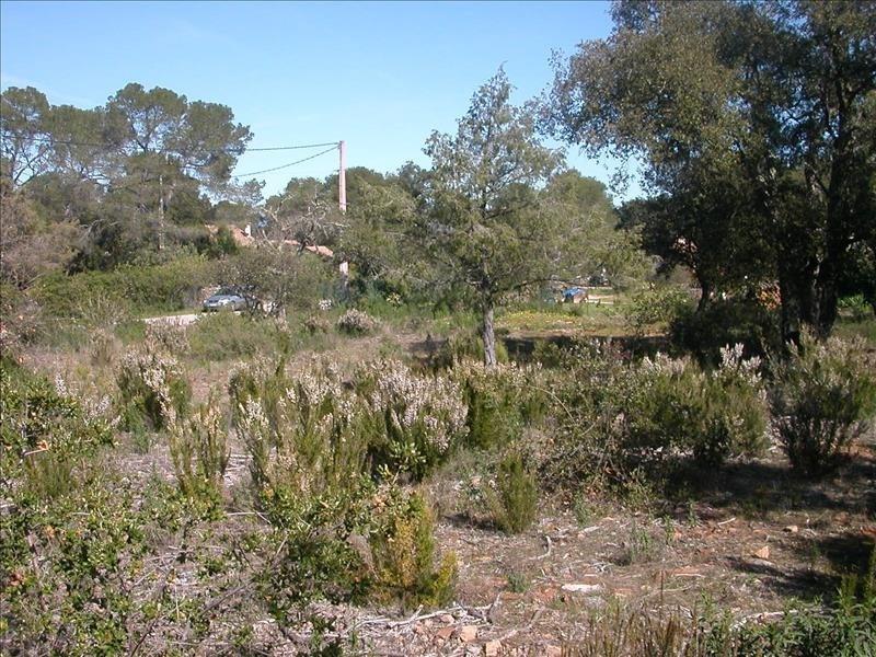 Vente terrain Le cannet des maures 141000€ - Photo 3
