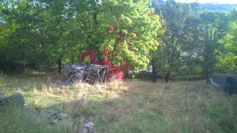 Vente terrain Brives charensac 37800€ - Photo 4