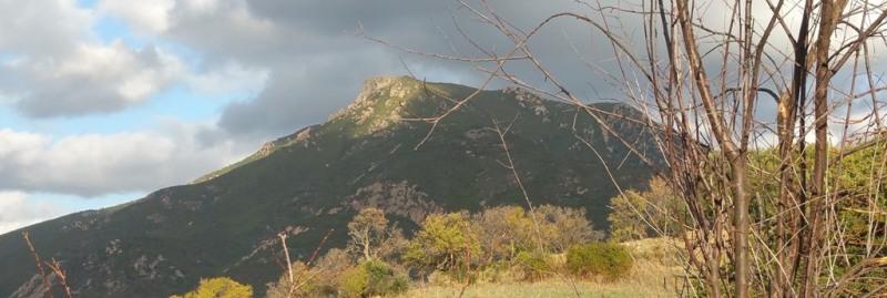 Vente terrain Bastelicaccia 160000€ - Photo 12