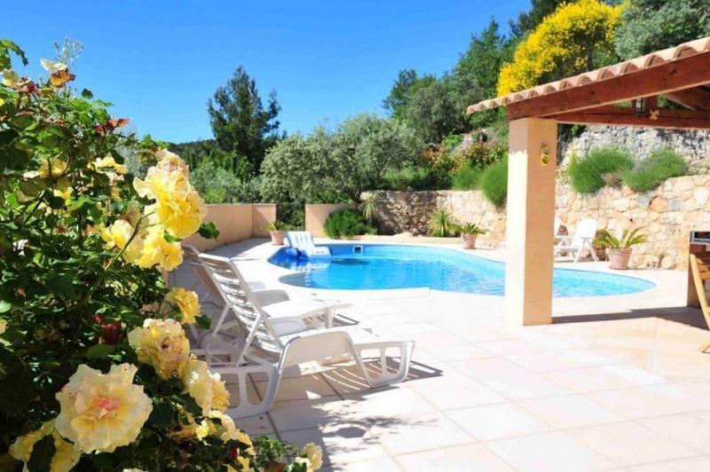 Vente de prestige maison / villa Seillans 895000€ - Photo 18