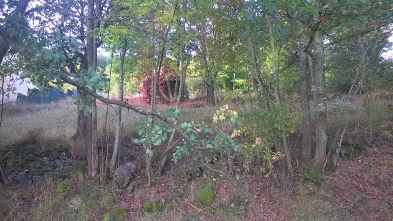 Vente terrain Brives charensac 37800€ - Photo 2