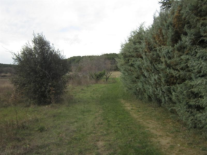 Vente terrain Lambesc 30 000€ - Photo 3