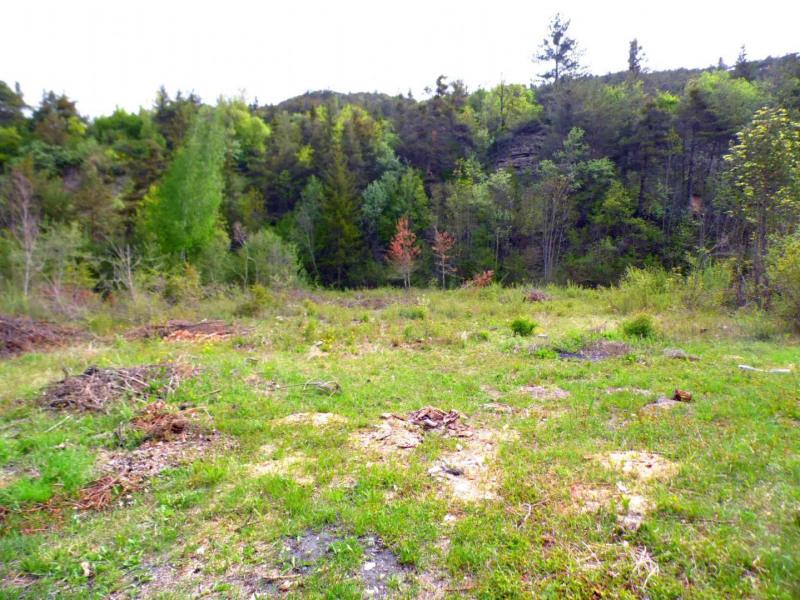 Vente terrain Uvernet fours 115500€ - Photo 3