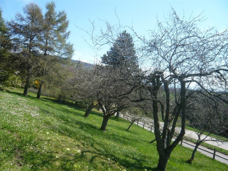 Vente terrain Cernex 212000€ - Photo 6
