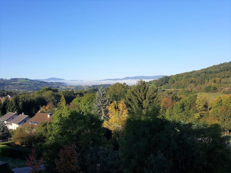 Vente appartement Balmont 235 000€ - Photo 9