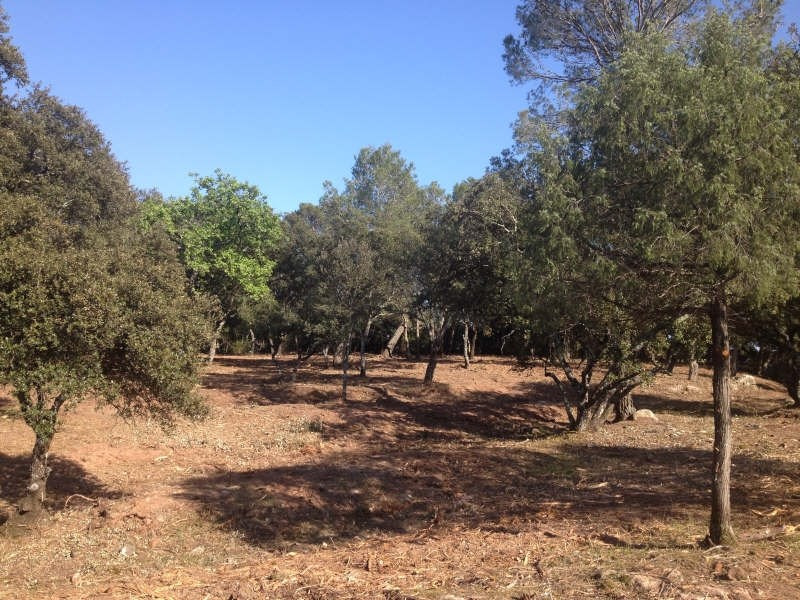 Sale site Le cannet des maures 140 000€ - Picture 2