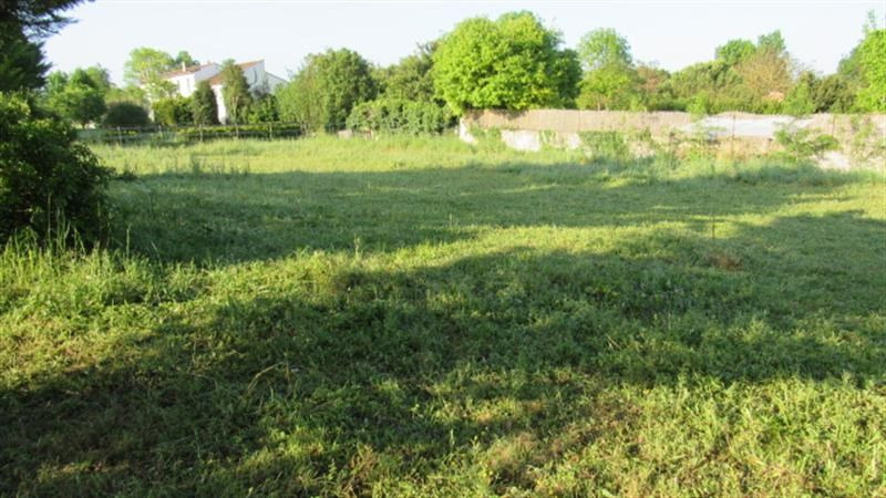 Vente terrain Bignay 16 800€ - Photo 2