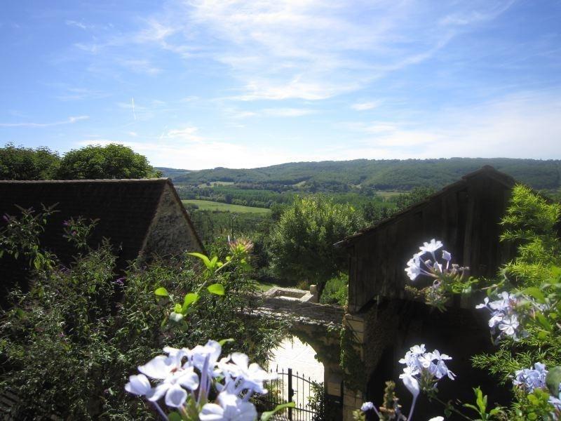 Sale house / villa Bezenac 475000€ - Picture 8