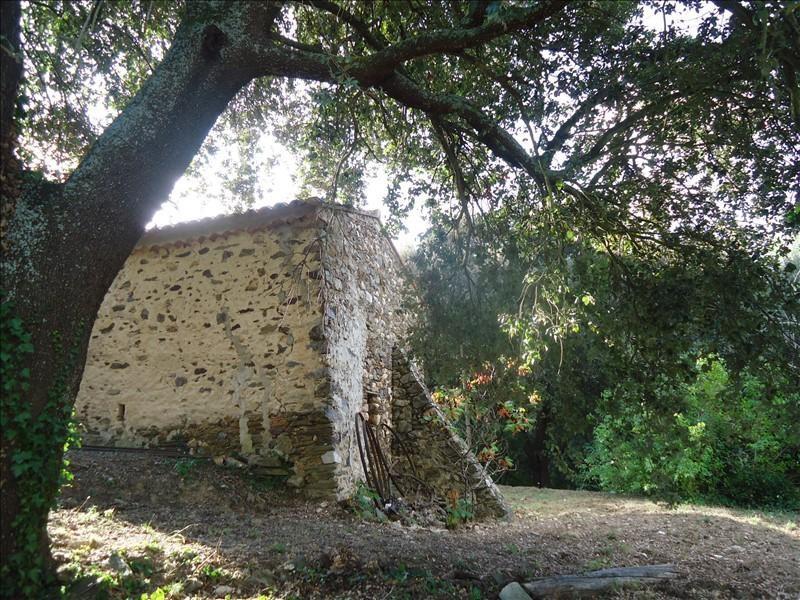 Vente maison / villa Calmeilles 397000€ - Photo 7