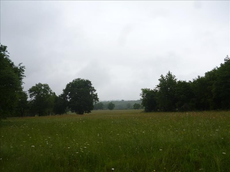 Vente terrain St meard de gurcon 22000€ - Photo 1