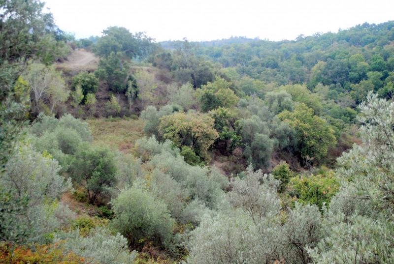 Vente terrain Bagnols-en-forêt 235000€ - Photo 13