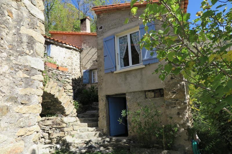 Sale house / villa Vallespir 548000€ - Picture 2