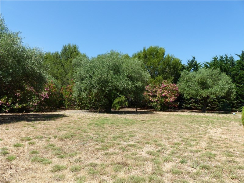 Vente maison / villa Beziers 399 000€ - Photo 3