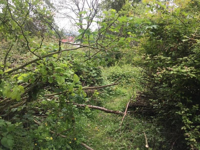 Vente terrain Frepillon 49000€ - Photo 2