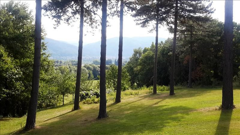 Vente de prestige maison / villa Proche de mazamet 399000€ - Photo 2