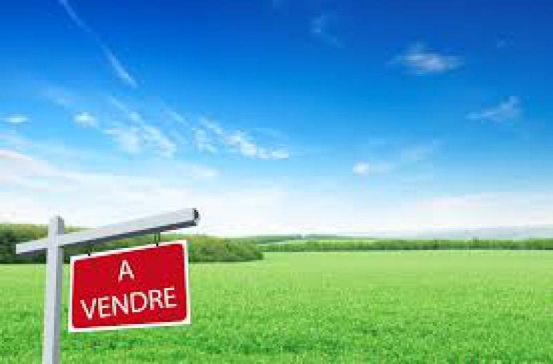 Revenda terreno Commercy 40000€ - Fotografia 2