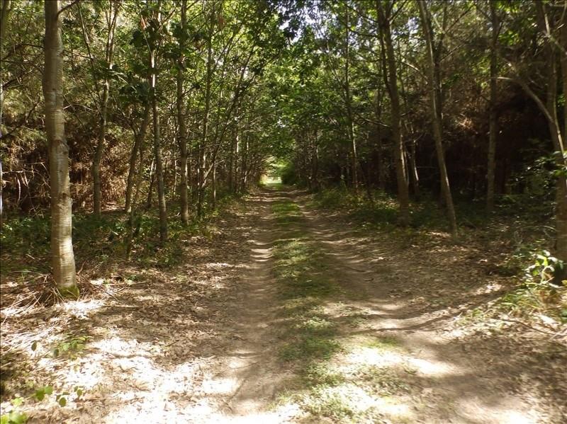 Vente terrain Lucenay les aix 145000€ - Photo 5