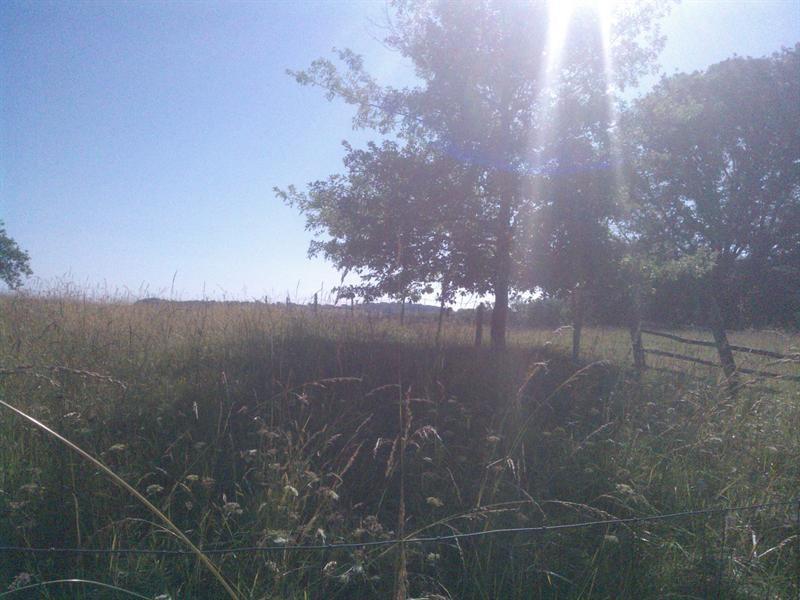 Vente terrain Villemur sur tarn 54000€ - Photo 2