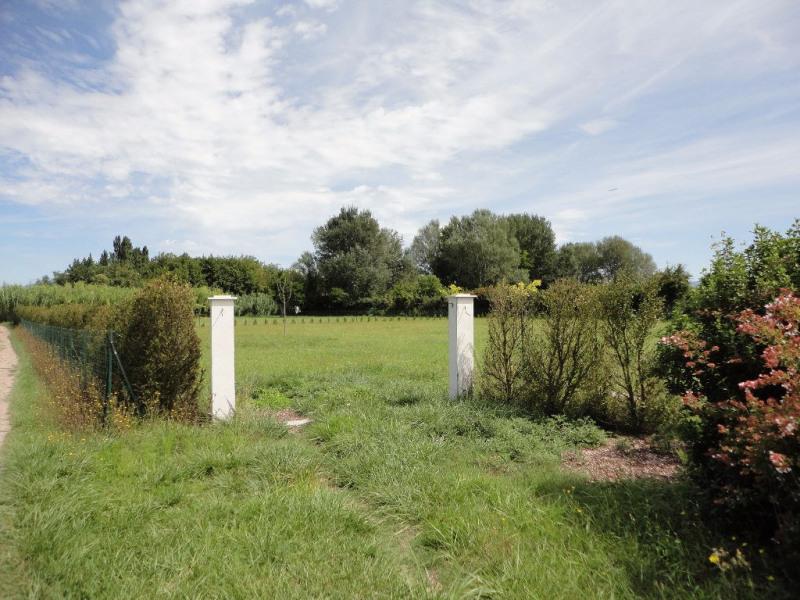 Vente terrain Althen des paluds 50000€ - Photo 3