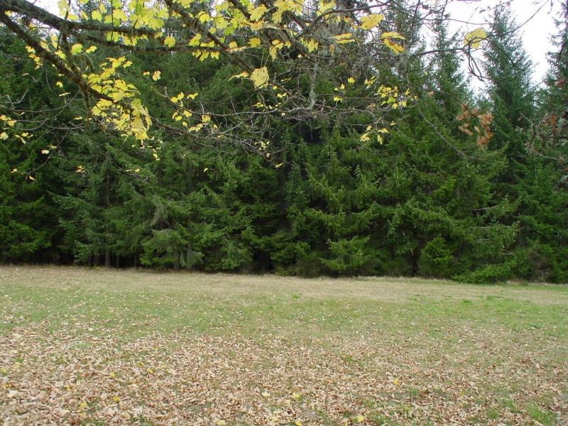 Vente terrain Le chambon sur lignon 27920€ - Photo 3