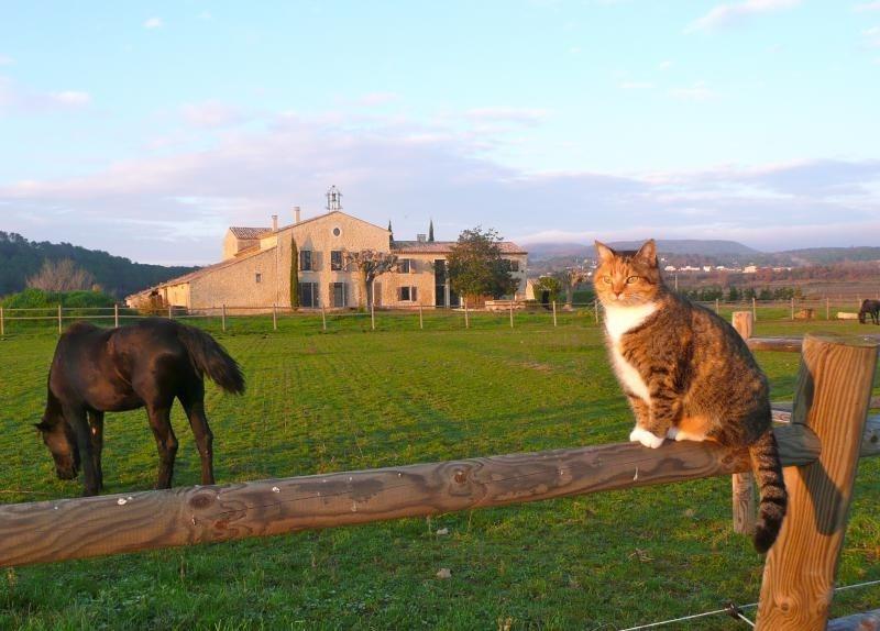 Vente de prestige maison / villa Goudargues 1690000€ - Photo 9