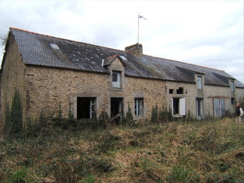 Sale house / villa Pleugriffet 49050€ - Picture 1