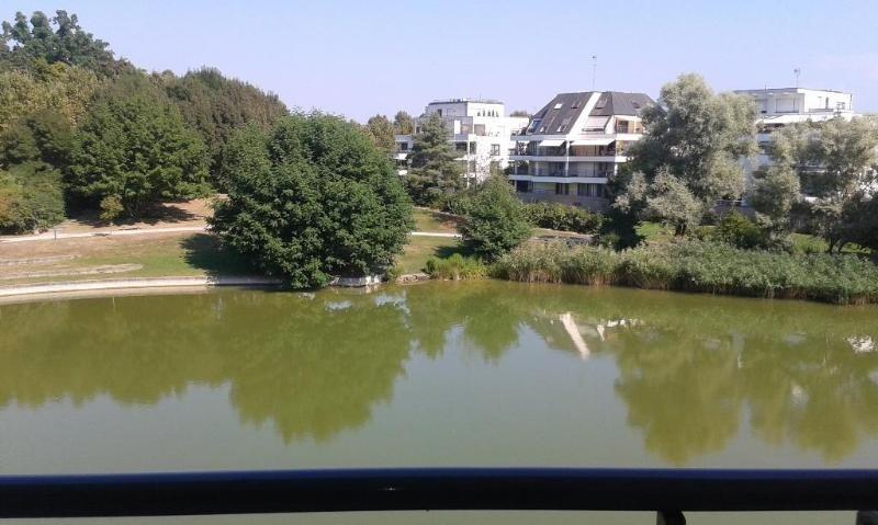 Location vacances appartement Strasbourg 900€ - Photo 10