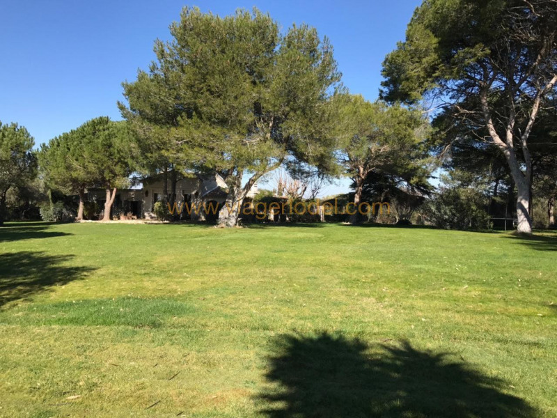Vitalicio  casa Fabrègues 950000€ - Fotografía 2