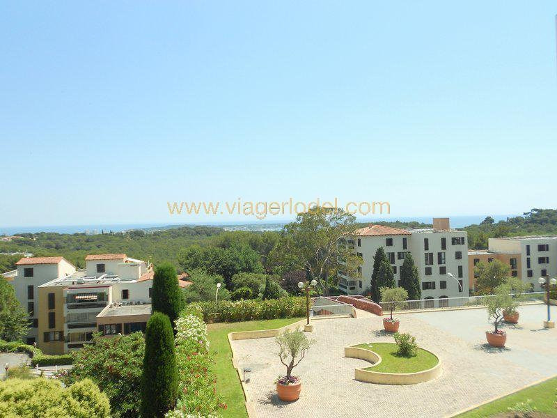 Viager appartement Antibes 74 000€ - Photo 6