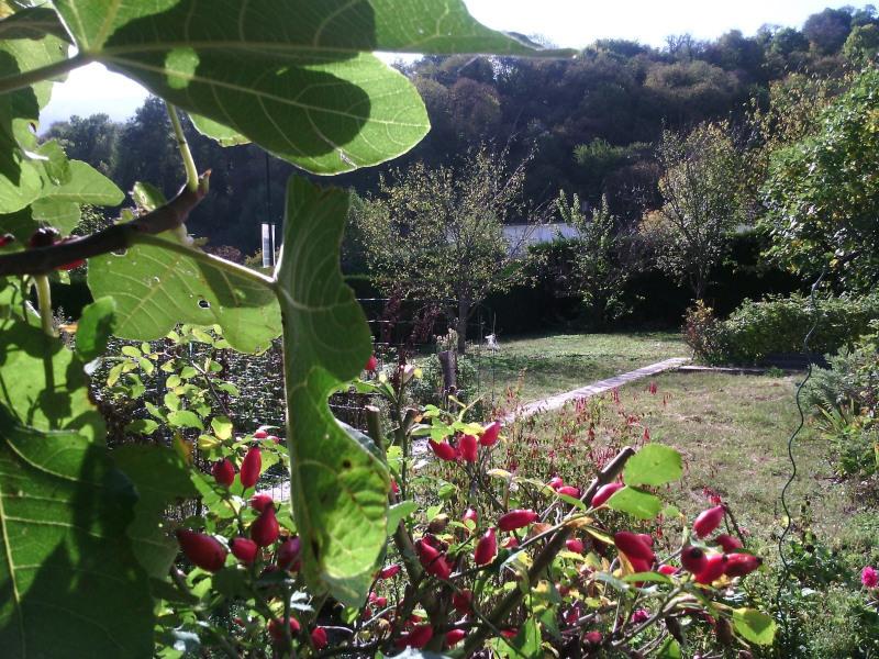 Produit d'investissement maison / villa Lau balagnas 201400€ - Photo 3