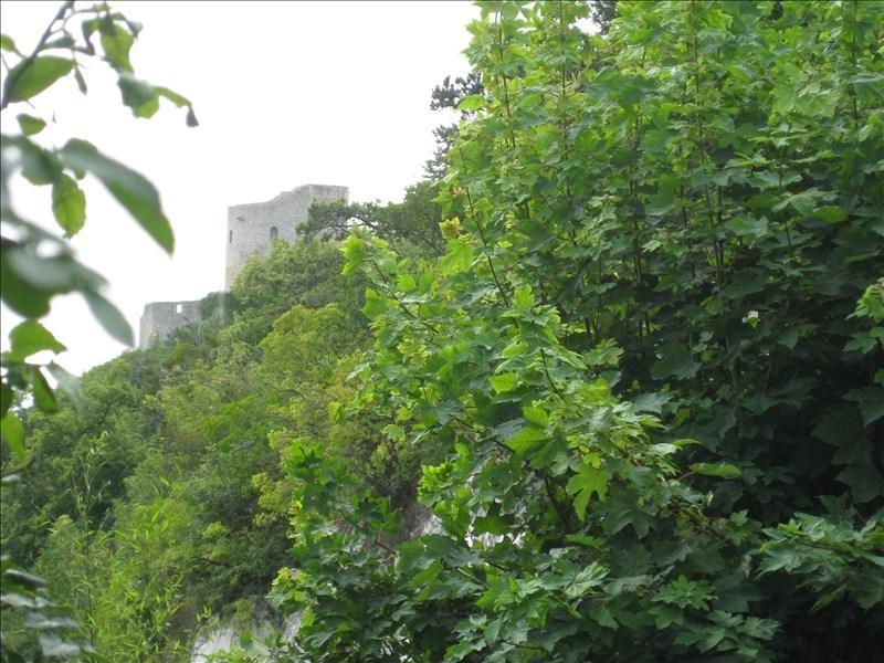 Vente maison / villa La roche guyon 498000€ - Photo 3
