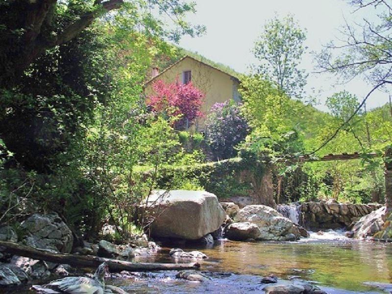 Vente de prestige maison / villa Amelie les bains palalda 568000€ - Photo 1