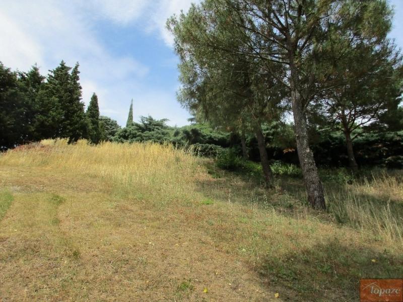 Vente de prestige terrain Vigoulet-auzil 227800€ - Photo 4