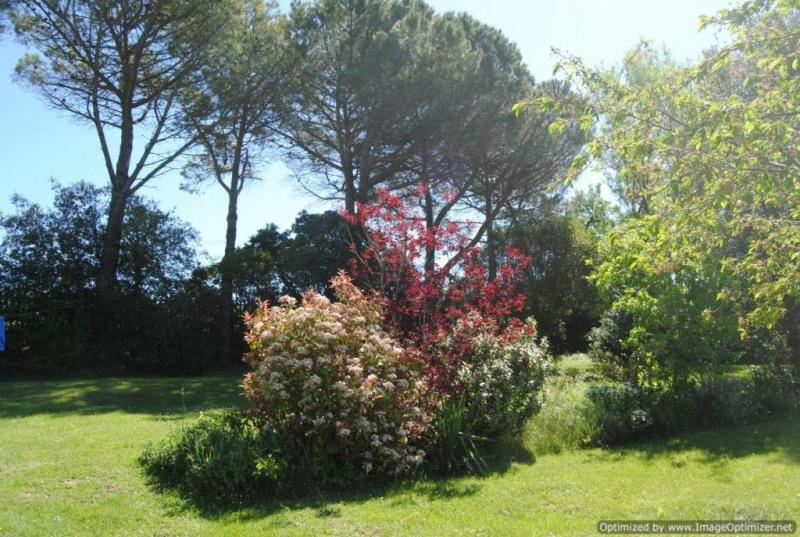 Vente maison / villa Alzonne 462000€ - Photo 16