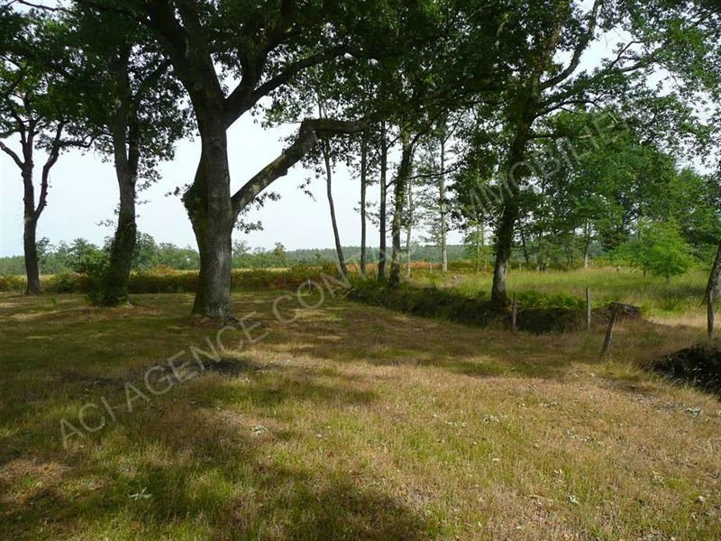 Vente terrain Vielle soubiran 61 000€ - Photo 1